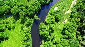 Beautiful old green forest and river in Poland, aerial view, Tuchola national park