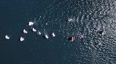 Regatta of small boats on the lake in summer Stock Footage