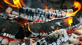 Hot coals and wood in the campfire in summer