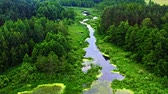 Small river and old green forest in Tuchola natural park, Poland from above