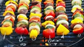 saslik : Homemade and spicy skewers on grill with meat and vegetables in summer
