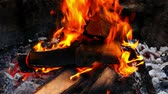 lagerfeuer : Closeup of hot coals and wood in summer campfire