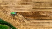 Top view of combine harvesting golden ripe wheat field. Harvester working in field, aerial view Dostupné videozáznamy