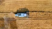 Top view of combine harvesting ripe wheat field, aerial view