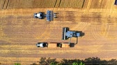 Top view of big harvester harvesting seed, Poland