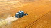 rogge : Flying above blue harvester harvesting seed in Poland Stockvideo