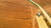 farming machinery : Harvester harvesting seed in Poland in summer, aerial view Stock Footage
