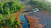 Aerial view of river and swamps in autumn, Poland