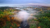 polônia : Foggy sunrise at river and forest in autumn, aerial view
