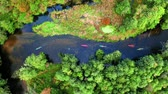 canoe : Top view of Kayaking by autumn on river by forest