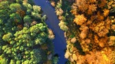 Yellow and green forest and river at sunrise, aerial view Stock mozgókép