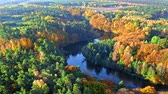 Sunrise at river and forest in autumn, aerial view Stock mozgókép