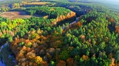 Colorful forest and river in autumn from above