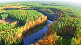 Colorful forest and blue river in autumn, aerial view Dostupné videozáznamy
