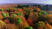 Aerial view of colorful autumn forest, Poland Dostupné videozáznamy