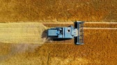 Top down view of blue harvester working on golden field 무비클립