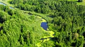 River and forest in natural park from above, Poland Vidéos Libres De Droits