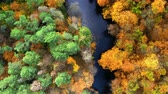 Top down view of river and autumn forest