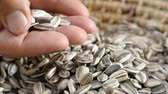 Closeup of man scooping handful of sunflower seeds Vídeos