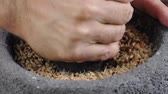 Closeup of hand of person using grinding stone and mortar and pestle to grind sprouted wheat berries