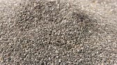 grubas : Closeup on pile of raw whole chia seeds being scooped with spoon and fingers