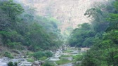 Telephoto shot in morning of winding river and endemic forest in Rio la Venta Canyon in Chiapas, Mexico Vídeos