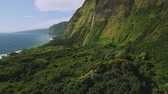 aerial view of beautiful waterfall on North Shore of Kauai, Hawaii Stock Footage