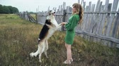 greyhound : girl in green dress with two Russian greyhounds