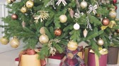 падуб : New Years gifts, Christmas decorations and other holiday attributes