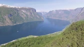 fiorde : Norway, Sognefjord - MAY 25, 2018: Stegastein Lookout Beautiful Stock Footage