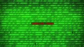 fingerprint : Wall of Green Binary Code Revealing COMPUTER FRAUD Word Between Random Binary Data Matrix Background Stock Footage