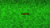 fingerprint : Wall of Green Binary Code Revealing DIGITAL Word Between Random Binary Data Matrix Background