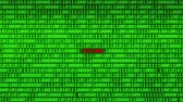 fingerprint : Wall of Green Binary Code Revealing FUTURE Word Between Random Binary Data Matrix Background Stock Footage