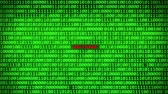 fingerprint : Wall of Green Binary Code Revealing Software Word Between Random Binary Data Matrix Background