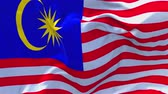 votação : Malaysia Flag Waving in Wind Slow Motion Animation . 4K Realistic Fabric Texture Flag Smooth Blowing on a windy day Continuous Seamless Loop Background. Vídeos