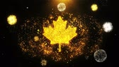 principe : Canadian Maple Leaf Icon on Firework Display Explosion Particles. Object, Shape, Text, Design, Element, Symbol 4K Animation.