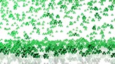 bizonyítani : Lots of Tiny Green Clovers Raining With A White Background Stock mozgókép