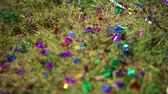 copy : Confetti on green grass at the open-air ceremony
