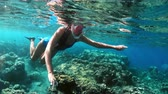 tilt : Young lady snorkeling over coral reefs in a tropical sea. Woman with mask snorkeling in clear water
