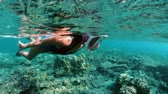diving equipment : Underwater girl snorkeling in a clear tropical water at coral reef. Young woman swimming above bright coral reef in the sea on a background of a tropical beach