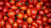 panier : A lot of red tomatoes close up pan on a 4K background. Farm lettuce tomatoes panning in a store. Background of red tomatoes panoramic for the buyer. Clear place for your isolated text pattern. Vidéos Libres De Droits