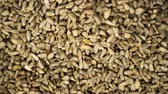 nozes : Sunflower seeds close up turning against a background in a grocery 4K. Fried seeds spining slowly showing their presentation. The sunflower background rotating beautifully for the buyer.