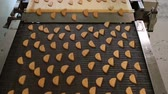 biscoitos : Production line of baking cookies. Conveyor with cookies. Many sweet cake food factory. Freshly baked shortbread cookies leave the oven. Cookies on a conveyor in a confectionery factory oven.