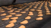 ремень : Cookies on a conveyor in a confectionery factory oven. Freshly baked shortbread cookies leave the oven. Production line of baking cookies. Conveyor with cookies.