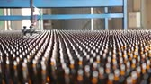 recycling plant : Glass bottle factory. Focus on bottles on a conveyor belt in a bottle. Transporter belt. Clean bottles are moving along the conveyor. Empty beer bottles on the conveyor belt. Variable soft focus.