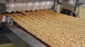 quebradiço : Cutting a long line of viscous nougat into bars. Nougat with nuts of golden color on the conveyor in a confectionery factory. Bars of nougat with peanuts on the production line of the factory.
