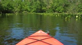 canoe : Kayaking through lush green jungle and mangrove swamp. Red boat sails along the river. Boat view moving forward nearly rainforest at the river estuary the conserve nature environment. 4K, POV. Stock Footage