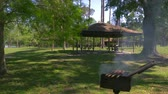 jehněčí : Barbecue with delicious grilled meat on grill. Barbecue party, delicious food on the grill. Meat barbecue in the park. Meat is baked on the grill in the park. Grilled shish kebab on metal skewer.