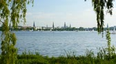 swan : View of the Alster lake in Hamburg. UHD, 4K