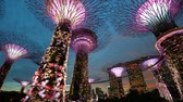 illuminated : Gardens by the Bay, Singapore